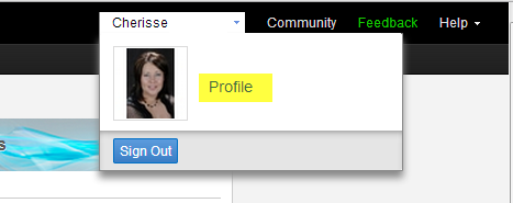 Autodesk 360 profile