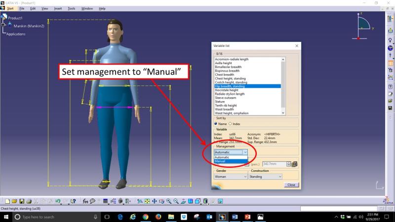 Human Measurements Picture 4