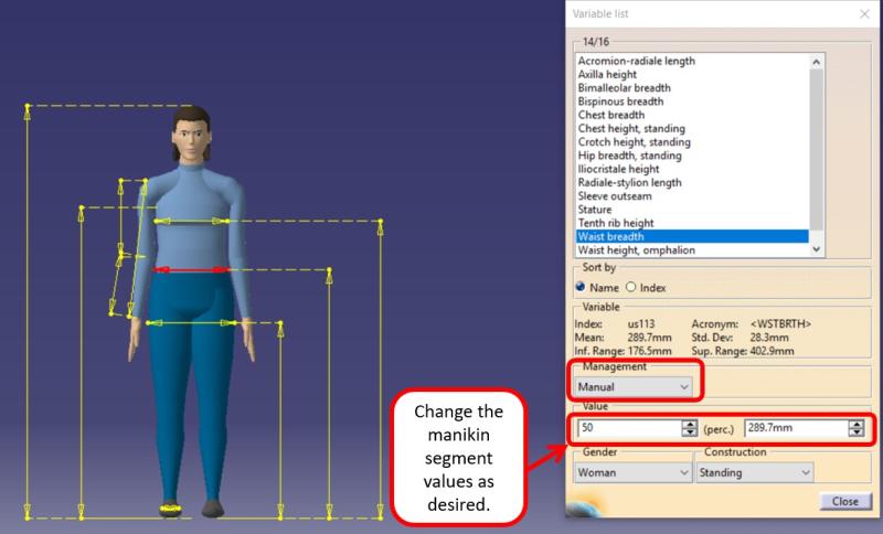 Human Measurements Picture 5