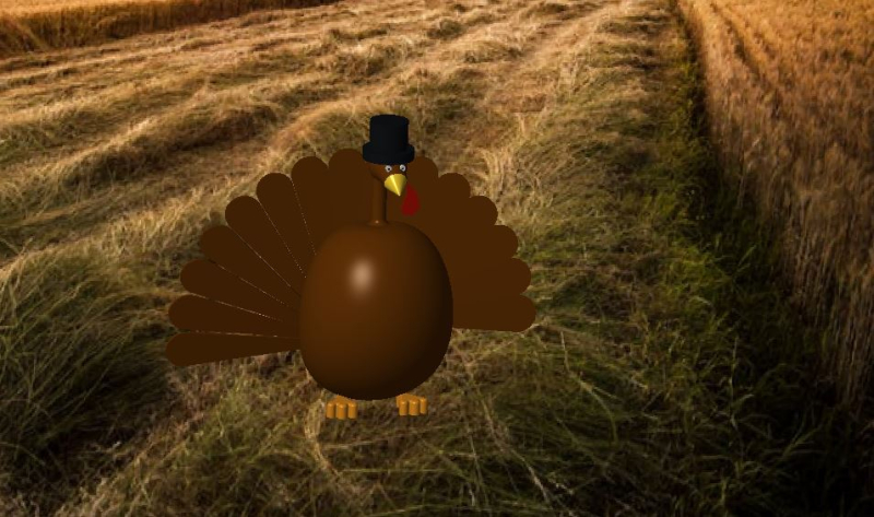 Tyler_Turkey1